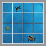 Ceiling Design se-df060_8x8md de David Fleetham